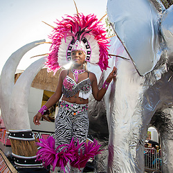 Carnival 2015 Adult's Parade
