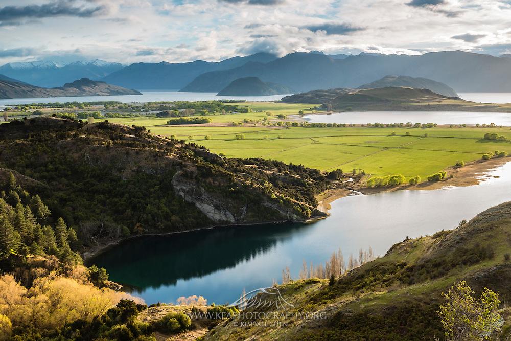 Morning light illuminates green farmland surrounded by the many waterways of Lake Wanaka.
