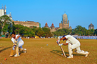 Inde, Maharashtra, Mumbai (Bombay), partie de cricket sur le Maidan // India, Maharashtra, Mumbai (Bombay), cricket party on the Maidan