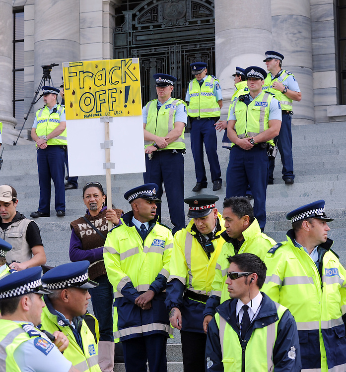 Police and Security man the steps after the hikoi against asset sales, and oil drilling at Parilament, Wellington, New Zealand, Friday, May 04, 2012. Credit:SNPA / Ross Setford