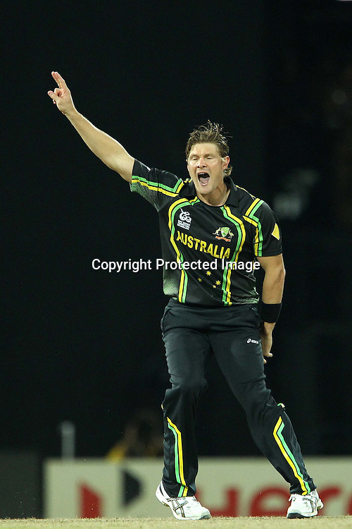 Shane Watson appeals for the wicket of Chris Gayle of The West Indies during the ICC World Twenty20 semi final match between Australia and The West Indies held at the Premadasa Stadium in Colombo, Sri Lanka on the 5th October 2012<br /> <br /> Photo by Ron Gaunt/SPORTZPICS