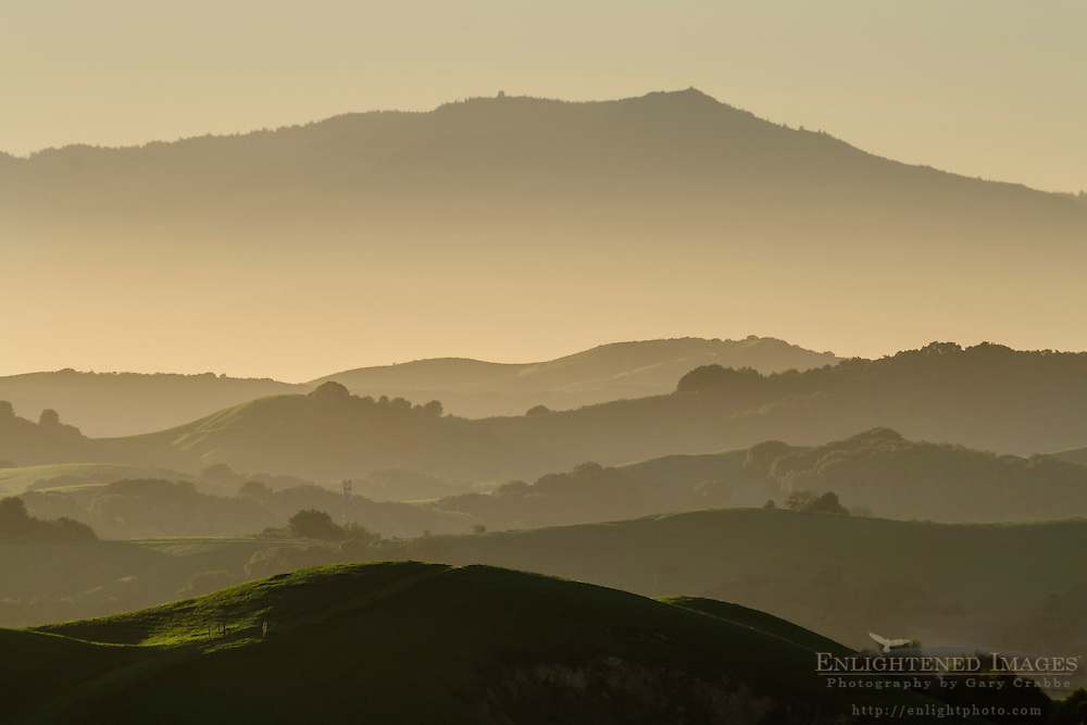 Rolling green hills of the East Bay, (looking toward Mount Tamalpais in distance) from Briones Regional Park, Contra Costa County, California