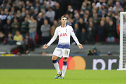 Tottenham Hotspur midfielder Erik Lamela (11) pointing, directing, signalling during the Champions League group stage match between Tottenham Hotspur and Inter Milan at Wembley Stadium, London, England on 28 November 2018.