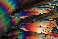A microscope view of backlit sugar crystals in polarized light.