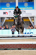 Greg Patrick Broderick - Santa Catalina<br /> FEI World Breeding Jumping Championships for Young Horses 2016<br /> © DigiShots