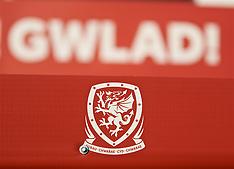 2019-03-20 Wales v Trinidad and Tobago