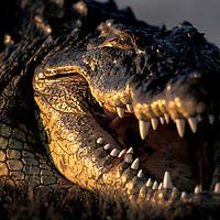 Botswana, Chobe National Park, Nile Crocodile (Crocodylus niloticus) lies along the banks of Chobe River at sunset