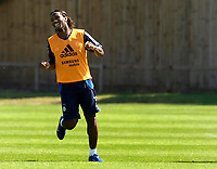 Photo: Daniel Hambury.<br />Chelsea Training Session. The Barclays Premiership. 24/07/2006.<br />Didier Droga is all smiles during training.