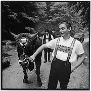 Beim Alpaufzug führt der Jungbauer den Stier mit seiner Hand, holding a bull with just one hand; jeune paysan tient un taureau par une main