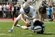 09/20/2014 - Somerville, Mass. - Tufts DL Evan Anthony, A16, sacks Hamilton QB base Rosenberg in the first quarter at Zimman Field on Sept. 20, 2014. (Kelvin Ma/Tufts University)
