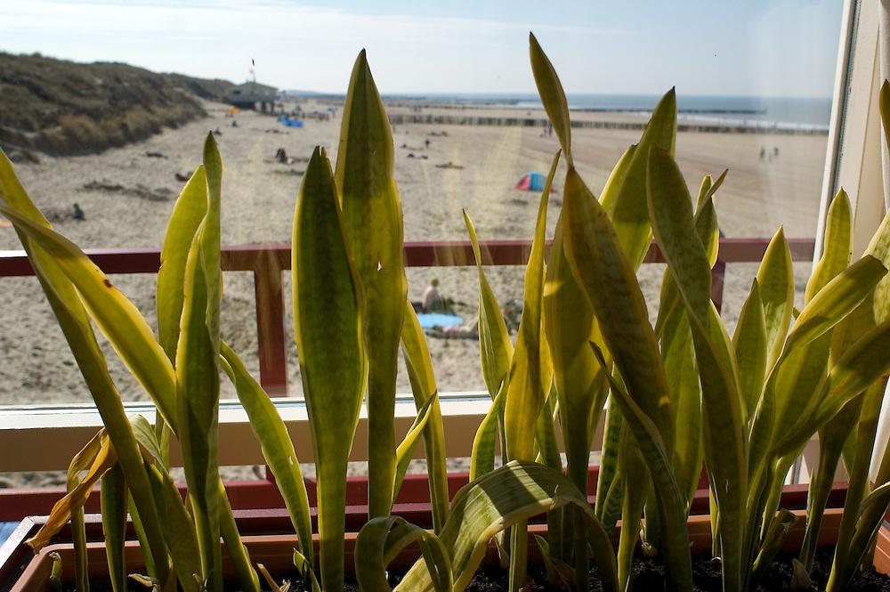Beachview from beachhousecafé in Zeeland, the Netherlands. Kitsch & Camp