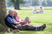 An elderly couple sit together under a tree in a UK park. The man is tenderly holding the womans arms. A younger couple sit in the background.