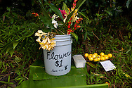 Maui, Hawaii. An honor fruit stand in the small town of Nahiku, located on the road to Hana.