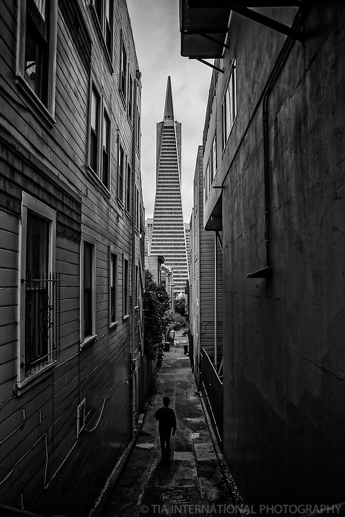 Welcome to the World of San Francisco
