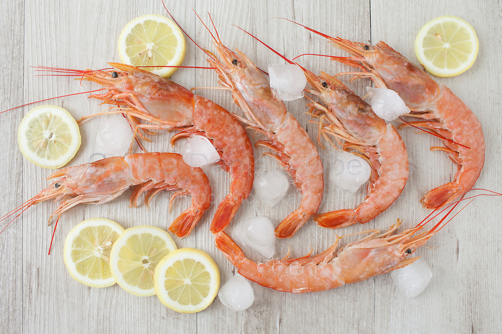 Fresh prawn on ice and lemon slices, flat lay.