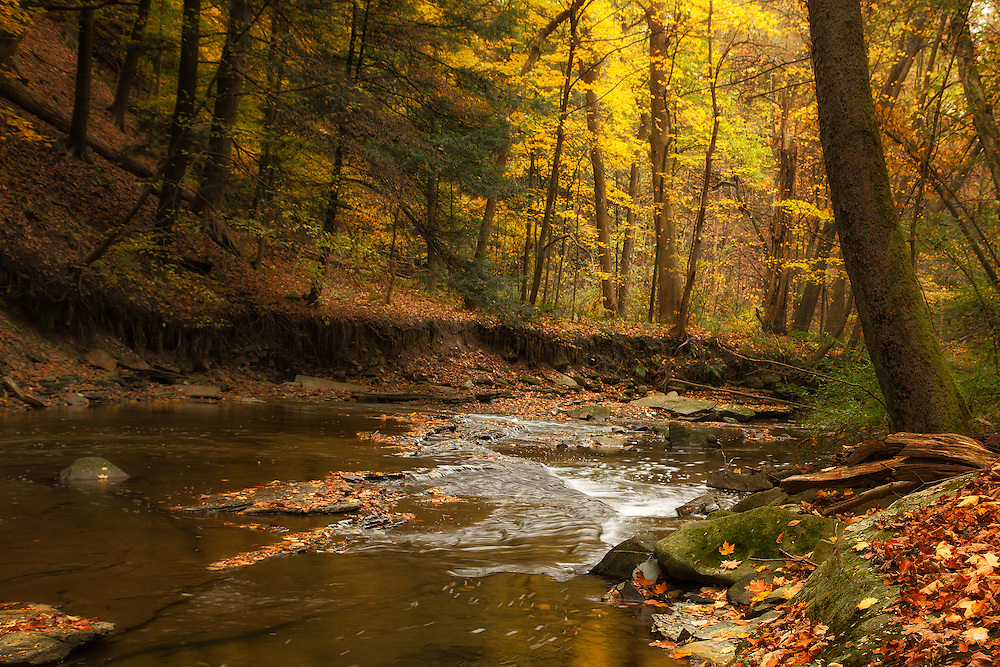 Brandywine in Fall<br /> <br /> Available sizes:<br /> 18&quot; x 12&quot; print or canvas print<br /> <br /> See Pricing page for more information Also available as a mousepad or greeting cards.