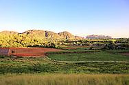 Fields near Vinales, El Moncada, Pinar del Rio, Cuba.