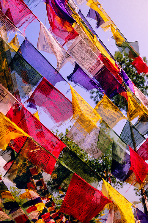 Prayer flags above Thimphu, Bhutan