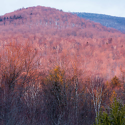 Winter in Vermont's Green Mountains. Shewsbury, Vermont. Jim Jeffords State Forest.
