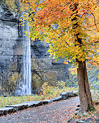 The colors of autumn add to the beauty of Taughannock Falls in the Finger Lakes Region of New York State.