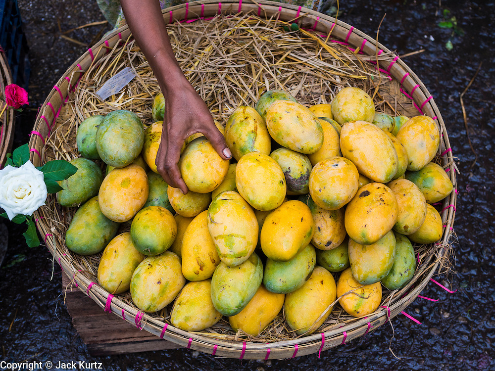 08 JUNE 2014 - YANGON, MYANMAR: Mangos for sale on the street in Yangon. Yangon, Myanmar (Rangoon, Burma). Yangon, with a population of over five million, continues to be the country's largest city and the most important commercial center.      PHOTO BY JACK KURTZ