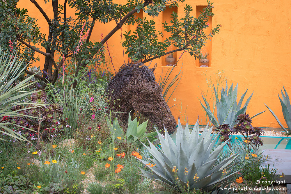 Beneath a Mexican Sky Garden, horse head sculpture with agaves in front of brightly painted walls. Design: Manoj Malde, Built by: Living Landscapes, Sponsored by: Inland Homes PLC