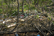 Litter-- 80% plastic drink containers-- covers an island in the Catawba River in Lancaster County, SC. Miles downstream from the City of Charlotte, trash litters the islands and shoreline. Upstream of the tributary which drains the City, there is hardly any trash.  For this clean-up event, Duke Energy sent a boat to pick up the trash bags, tires, and other items.