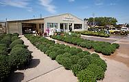 Frontier Garden Center, 1941 Blairs Ferry Road NE, in Cedar Rapids, on Thursday, September 8, 2011.