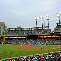 Marge Colburn Comerica Park