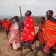 Maasai Maar in the Loita Hills near the Tanzanian border.A Maasai wedding party is underway. It is mainly Maasais who live in the Loita Hills up above the Serengeti plains. They live in small villages and communities called bomas and live mainly of raising and selling live stock such as cattle and goats. Its a very remote region in Kenya, hard to get to without a four wheel drive with very little infrastructure and up till 2010 no mobile phone network. The Maasais are well known though out Kenya and the world for their colorful clothing and their way of keeping their old traditions alive.
