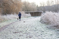 © Licensed to London News Pictures. 27/12/2016. Horsham, West Sussex, UK.  A woman walks her dog on frost covered ground in Horsham, West Sussex. Parts of the south of England have woken to frost and freezing weather this morning.  Photo credit: Vickie Flores/LNP
