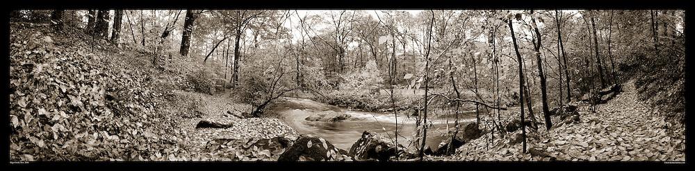 Panoramic Photograph of Sligo Creek Park, Takoma Park, MD.  Print Size (in inches): 15x4; 24x6; 36x9; 48x12; 60x15; 72x18