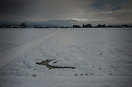 Snow blankets rice fields in the broad Kitakami plain in Tohoku's Iwate Prefecture.  Japan.