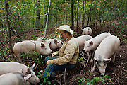 Organic farmer Joel Salatin sits with a group of free-range pigs in the woods at Polyface Farms in Swoope, Virginia on Monday, October 3, 2011.