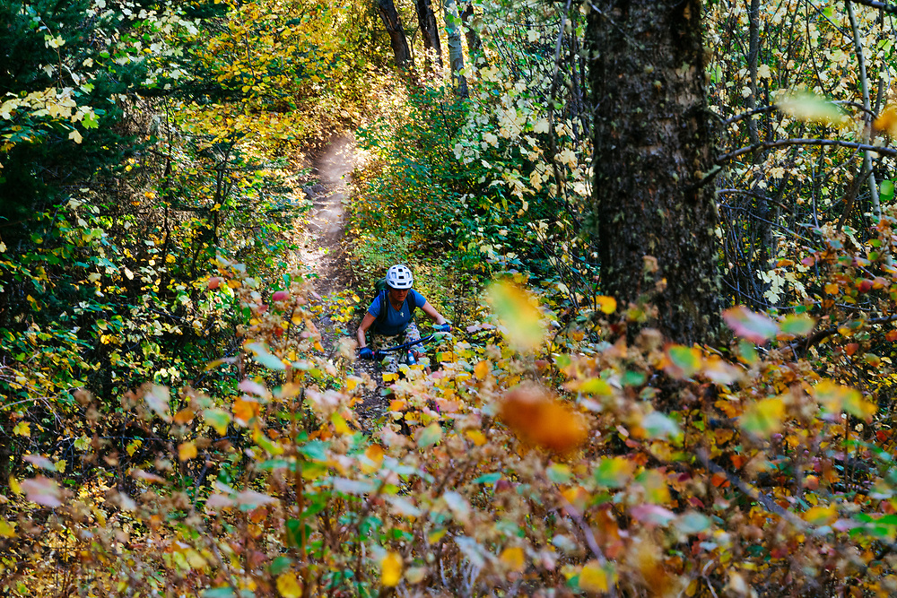Heather Goodrich riding autumn single track in the Palisades Wilderness Study Area of Wyoming.
