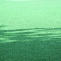 140921 groen veld