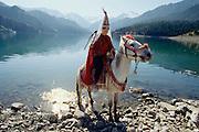 Tourist posing on a horse as a Kazhak bride at Heavenly Lake.
