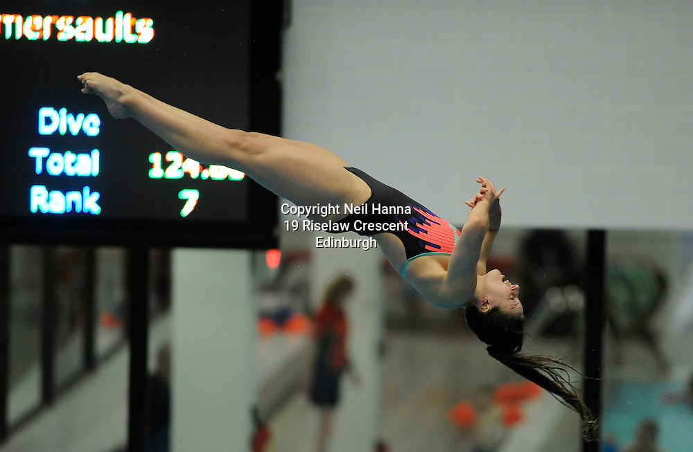 Scottish National Diving Championships & Thistle Trophy 2015<br /> <br /> Royal Commonwealth Pool, Edinburgh<br /> <br /> Event 23  Mens/Boys 3M Final<br /> <br /> <br />  Neil Hanna Photography<br /> www.neilhannaphotography.co.uk<br /> 07702 246823