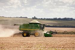Colheita de Soja mecanizada. Regiao de Pinhal Grande, Rio Grande do Sul. / Mechanical Soya harvest. Ano 2014. Foto Adri Felden/Argosfoto