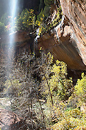 Waterfall, Emerald Pool Trail, Zion National Park