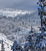 Winter Scenic Landscape Rocky Mountains