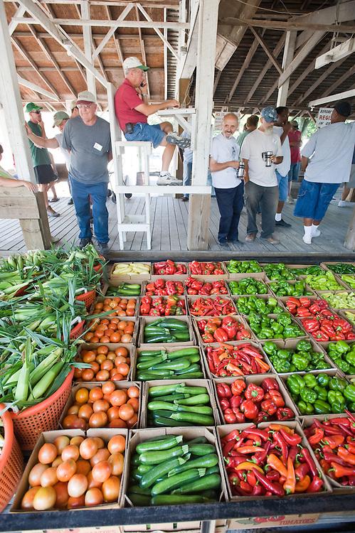 Laurel Farmers Market Produce Auction in Delaware