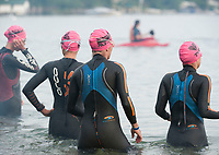 Past Timberman 70.3 Ironman competitors head into the water for the swim start at Ellacoya State Beach in Gilford.  (Karen Bobotas/for the Laconia Daily Sun)