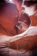 canyoneer rappels through the unlikely landforms of larry's canyon in the robber's roost zone of southeastern utah.