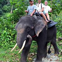 Elephant trekking in Tangkahan on the edge of Gunung Leuser National Park.