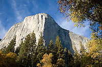 El Capitan on a sunny fall day in Yosemite National Park, Ca.
