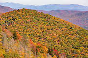 Autumn foliage in Blue Ridge National Park from Pounding Mill Overlook outside Asheville, North Carolina.