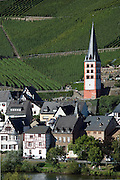 Merl bei Zell, vineyards, Mosel Valley, Rhineland Palatinate, Germany