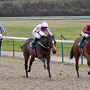 Lingfield 4th April