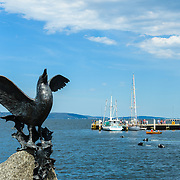Bird scupltures on Hobart waterfront with Victoria Dock in background